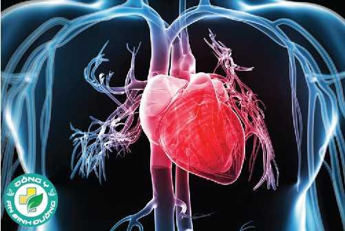 Có mối liên hệ giữa thiếu ngủ và bệnh tim mạch