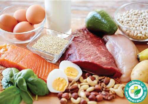 Protein sẽ chiếm một phần tư trong chế độ ăn uống cân bằng