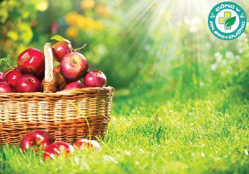 Táo chứa nhiều chất chống oxy hóa, vitamin, chất xơ và các chất dinh dưỡng khác