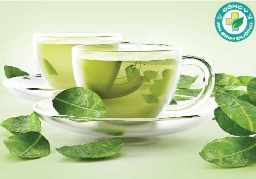EGCG có chủ yếu trong trà xanh