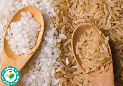 Có sự khác nhau giữa các loại gạo hay không?