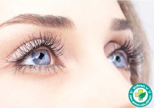 Sức khỏe của mắt có thể được cải thiện nhờ bổ sung đầy đủ chất dinh dưỡng
