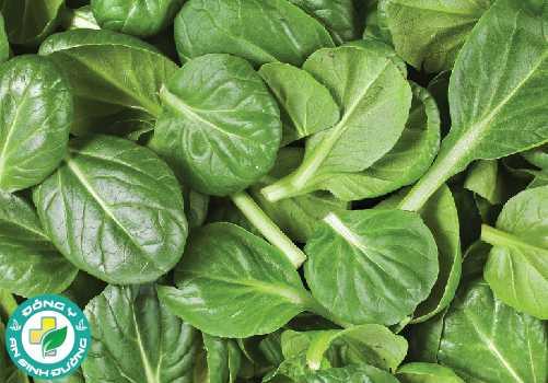 Phytoecdysteroids có trong rau bina giúp tăng sự phát triển cơ bắp lên đến 20 phần trăm