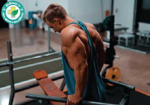 Testosterone thúc đẩy tăng trưởng cơ bắp cũng như giọng nói trầm và mọc lông trên cơ thể